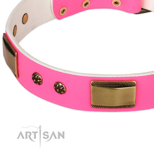 Corrosion resistant decorations on leather dog collar for your pet