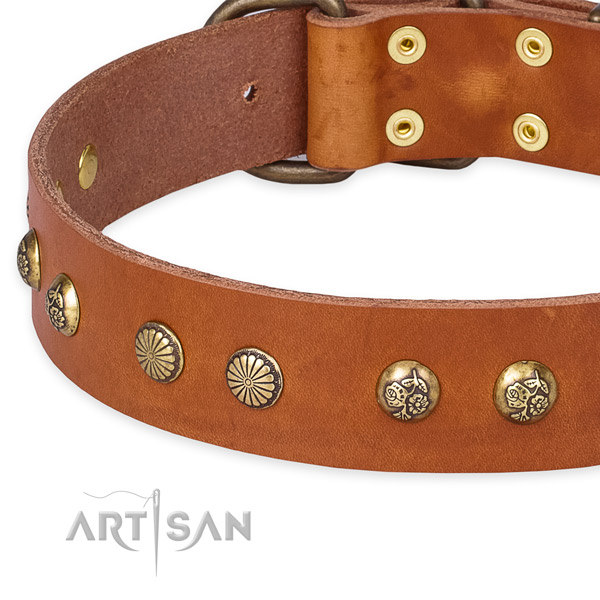 Natural genuine leather collar with corrosion resistant D-ring for your beautiful four-legged friend