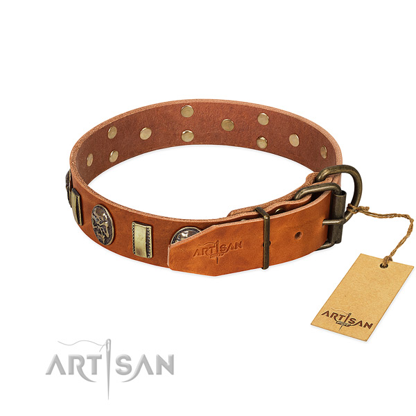 Reliable hardware on genuine leather collar for everyday walking your four-legged friend