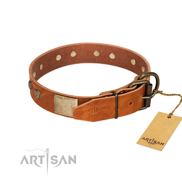 Strong traditional buckle on walking dog collar