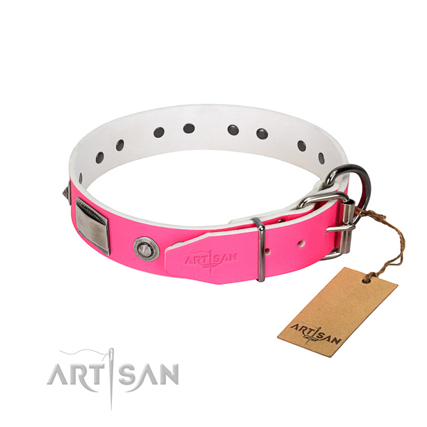 Unusual dog collar of natural leather with embellishments
