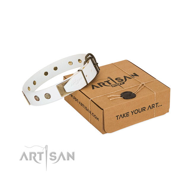 Rust-proof embellishments on dog collar for comfortable wearing