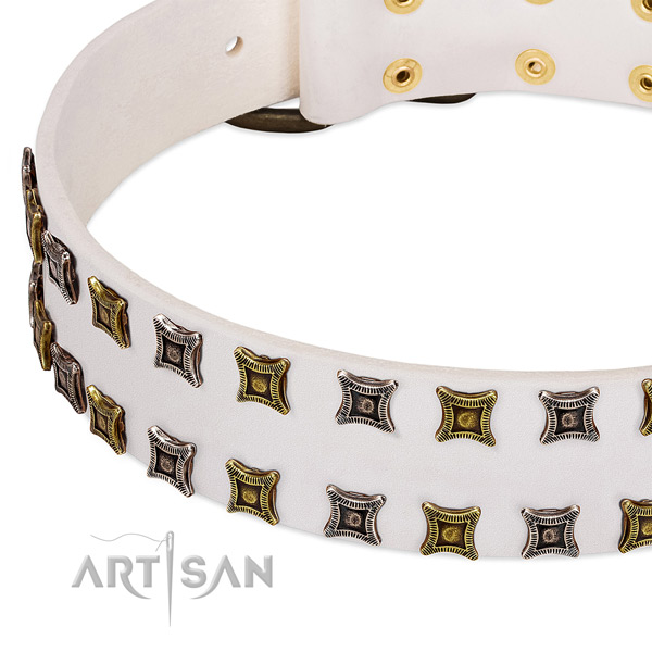 Natural leather dog collar with embellishments for your lovely dog