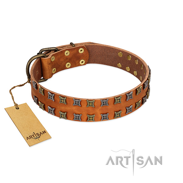 Top rate genuine leather dog collar with embellishments for your doggie