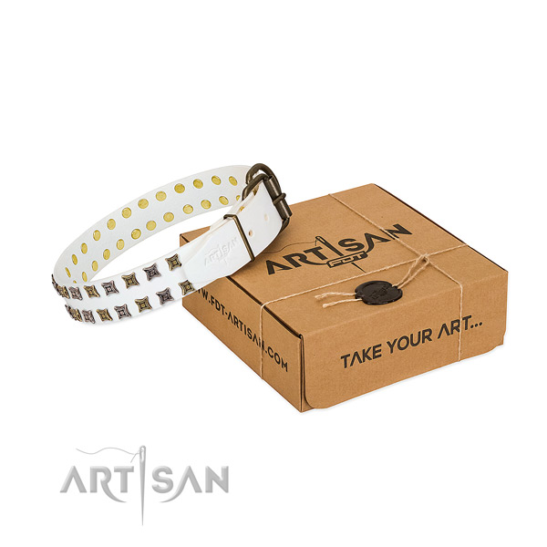 Full grain genuine leather collar with stylish adornments for your canine