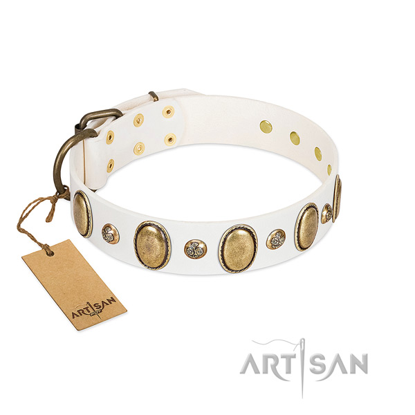 Genuine leather dog collar of soft to touch material with unique studs