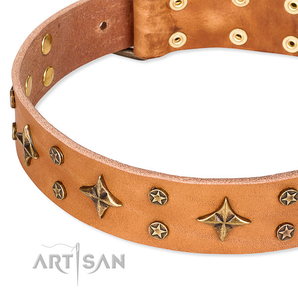Everyday use decorated dog collar of best quality genuine leather