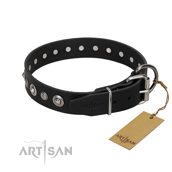 Durable natural leather dog collar with exquisite embellishments