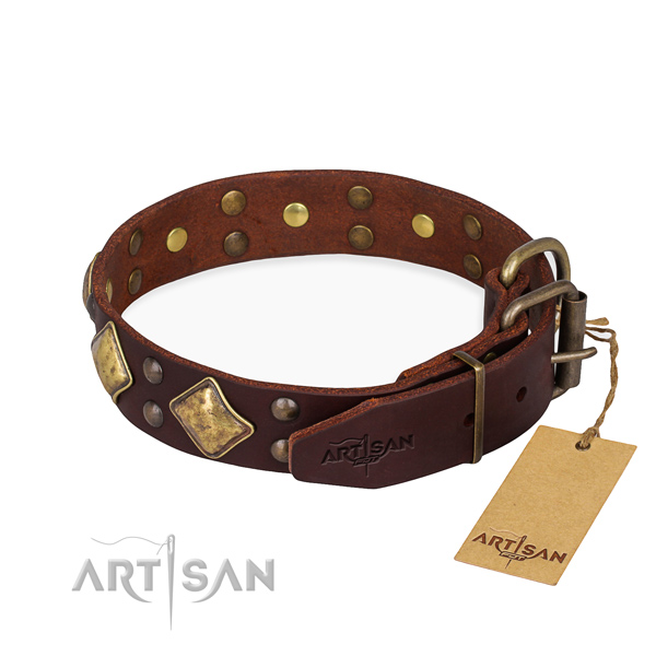 Leather dog collar with remarkable rust resistant studs