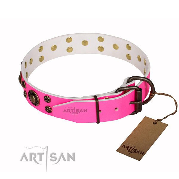 Basic training adorned dog collar of top notch full grain natural leather
