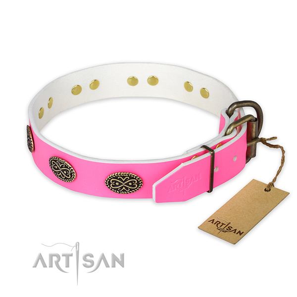 Rust resistant D-ring on handy use dog collar