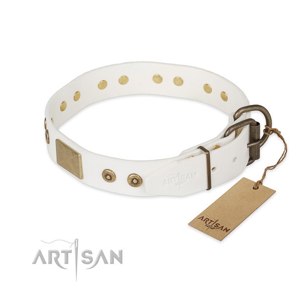 Corrosion resistant traditional buckle on full grain leather collar for fancy walking your pet