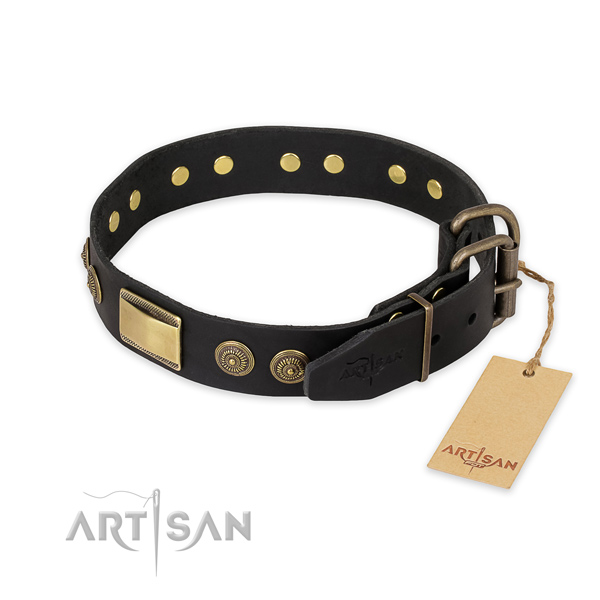 Durable buckle on full grain genuine leather collar for stylish walking your dog