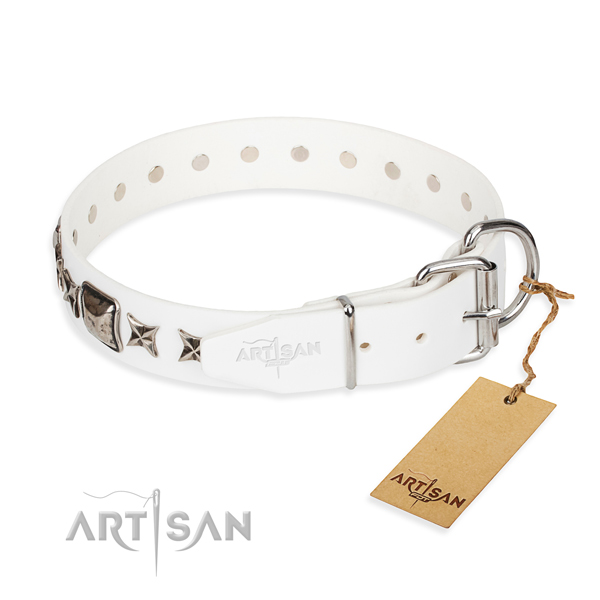Reliable decorated dog collar of full grain leather