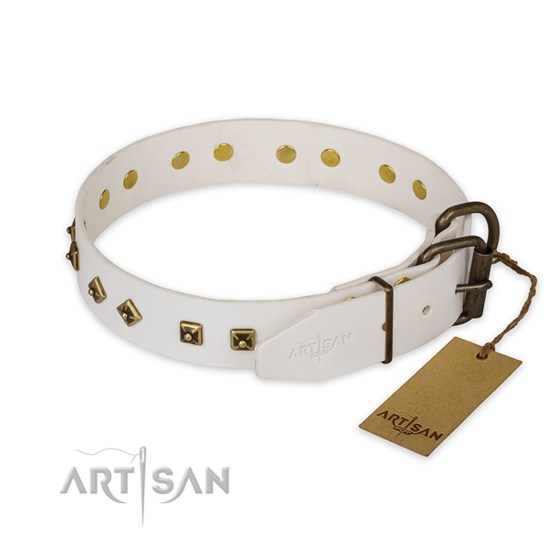 Rust resistant buckle on full grain natural leather collar for daily walking your doggie