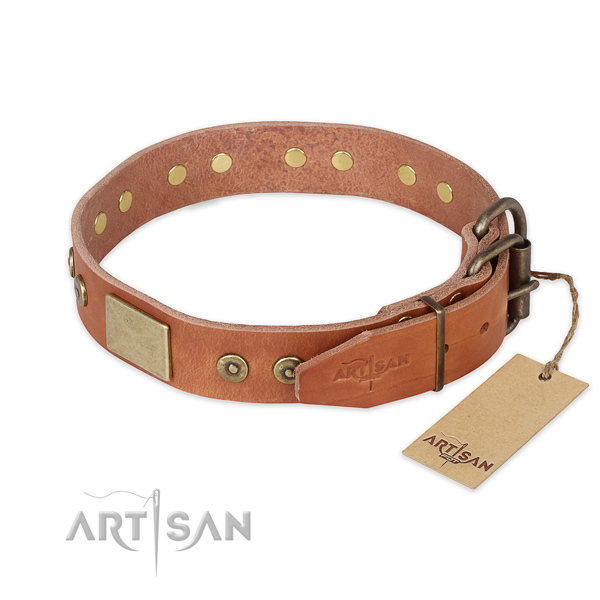 Corrosion resistant D-ring on full grain leather collar for walking your pet
