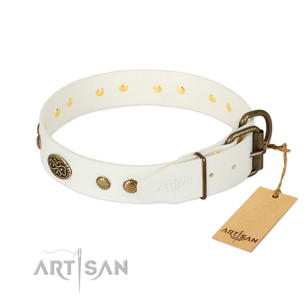 Corrosion resistant fittings on leather dog collar for your dog