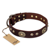 """Breath of Elegance"" FDT Artisan Decorated with Plates Brown Leather Golden Retriever Collar"