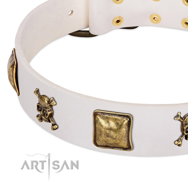 Daily use full grain leather dog collar with amazing embellishments