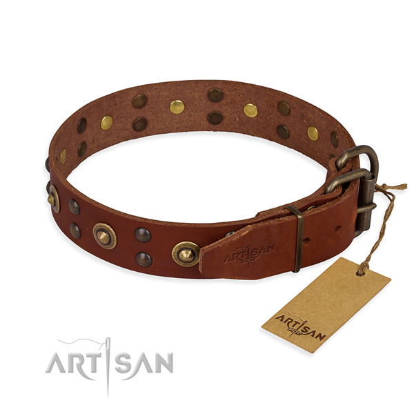 Corrosion resistant fittings on leather collar for your handsome dog