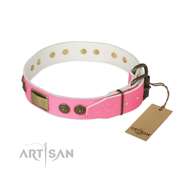 Corrosion proof decorations on easy wearing dog collar