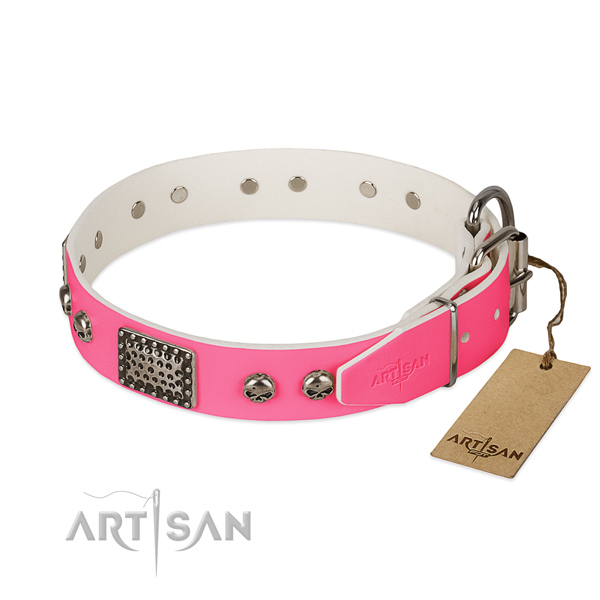 Rust resistant hardware on daily use dog collar