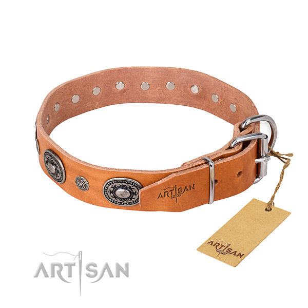 Durable genuine leather dog collar created for everyday walking