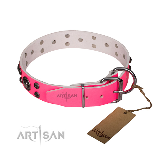 Daily use adorned dog collar of reliable full grain natural leather