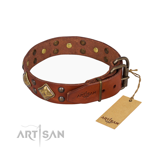 Leather dog collar with unusual corrosion proof adornments