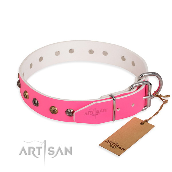 Full grain leather dog collar with trendy corrosion resistant studs