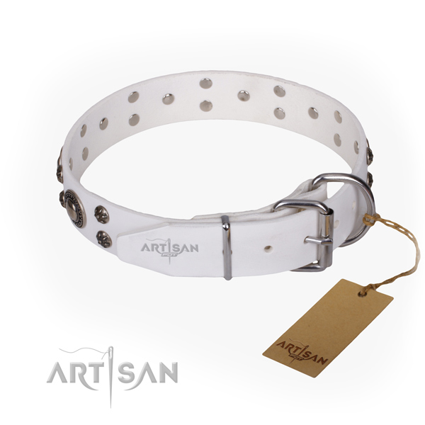 Everyday walking decorated dog collar of fine quality full grain natural leather