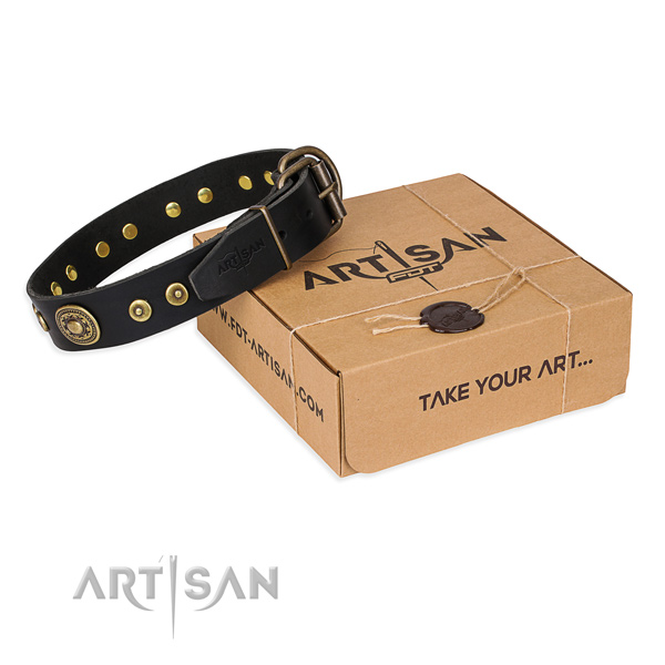 Full grain natural leather dog collar made of top notch material with rust resistant hardware