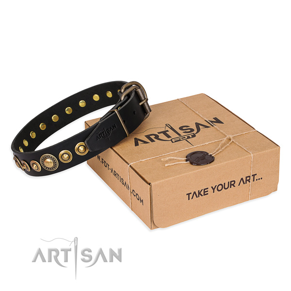 Durable full grain natural leather dog collar crafted for everyday use