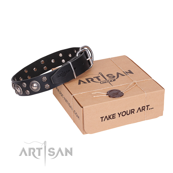 Daily use dog collar of high quality genuine leather with decorations