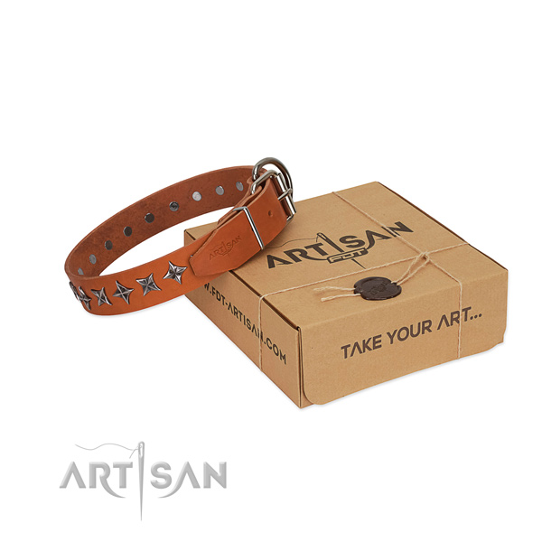 Quality genuine leather dog collar with unique studs