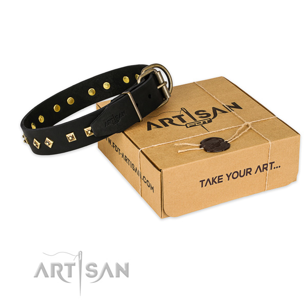 Reliable hardware on full grain leather collar for your handsome four-legged friend