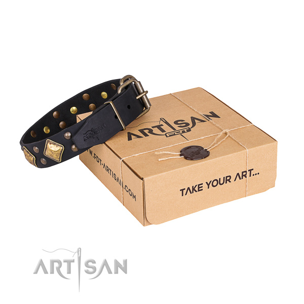 Daily use dog collar with Significant rust resistant decorations