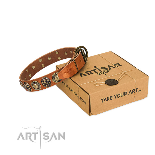 Rust-proof decorations on dog collar for walking