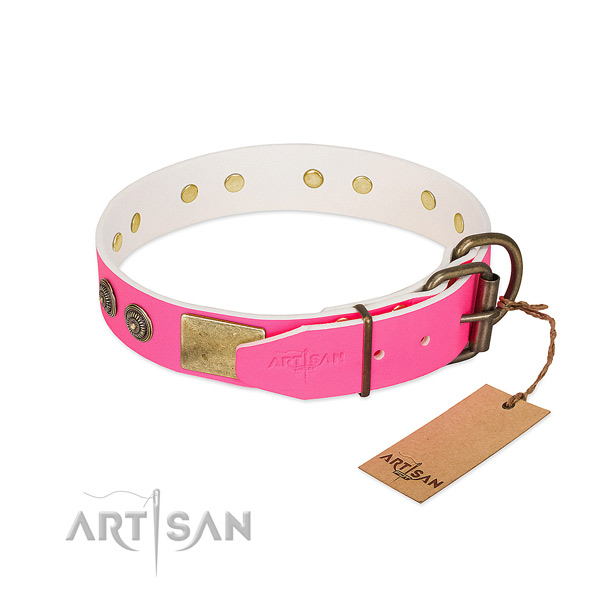 Rust-proof buckle on full grain leather collar for everyday walking your canine