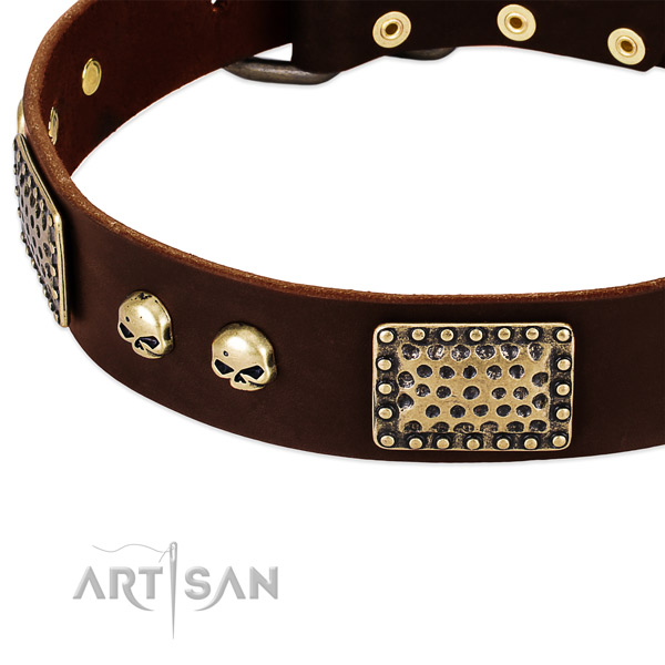 Corrosion proof embellishments on genuine leather dog collar for your pet