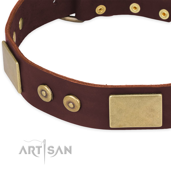 Genuine leather dog collar with adornments for comfortable wearing