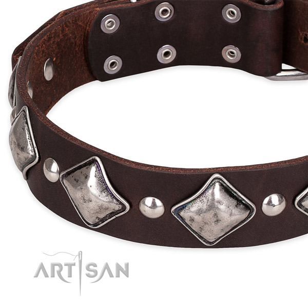 Comfy wearing adorned dog collar of finest quality full grain natural leather