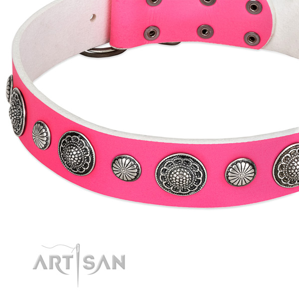 Leather collar with reliable buckle for your lovely dog