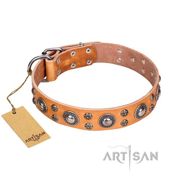 Comfortable wearing dog collar of durable natural leather with embellishments