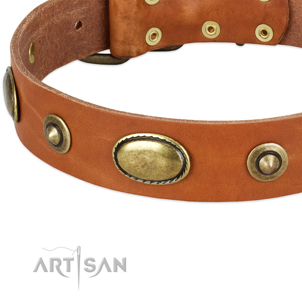 Rust-proof embellishments on full grain natural leather dog collar for your four-legged friend
