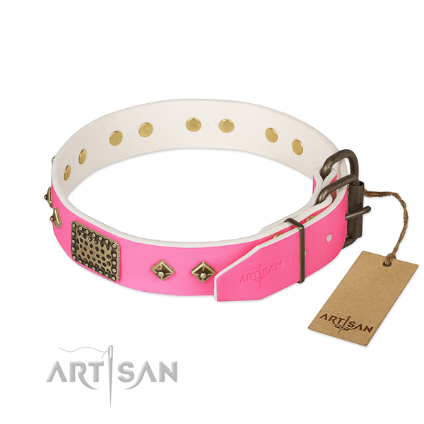 Rust resistant hardware on handy use dog collar