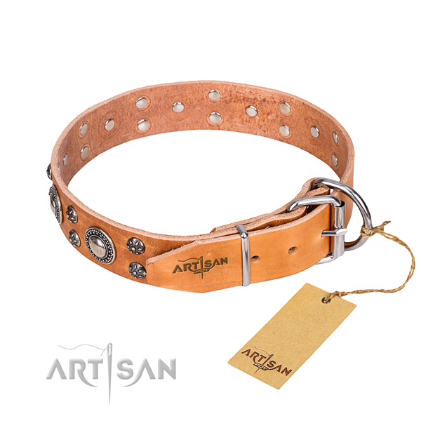 Daily use adorned dog collar of quality full grain natural leather