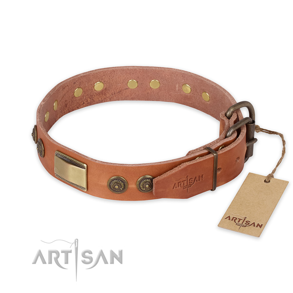 Strong traditional buckle on full grain leather collar for fancy walking your four-legged friend