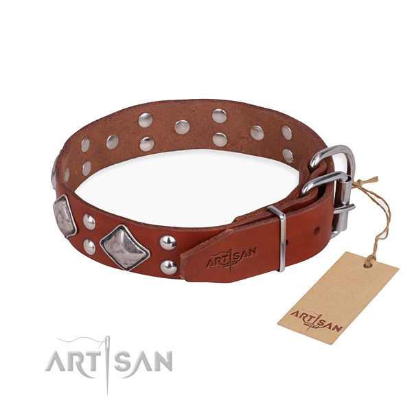 Leather dog collar with stylish design rust resistant studs
