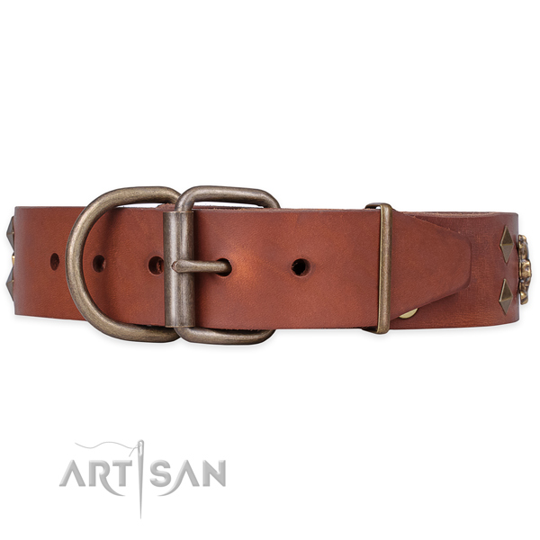 Basic training studded dog collar of high quality full grain genuine leather
